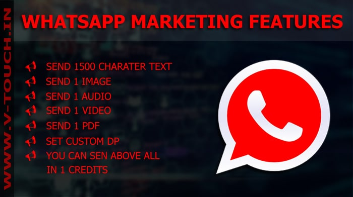 WhatsApp Marketing Service Provider in Indonesia